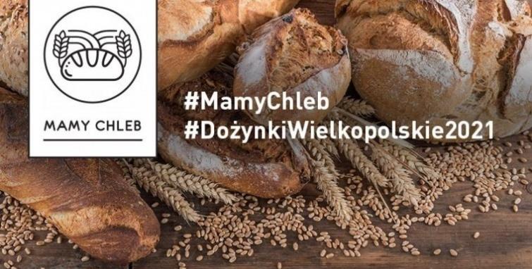 #MamyChleb – Marszałek Marek Woźniak zaprasza na Dożynki Wielkopolskie 2021 online